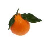 Mõru apelsin eeterlik õli 10ml