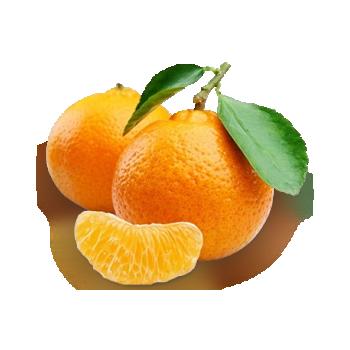 mandariin.png