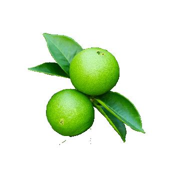 rohelineapelsin.png