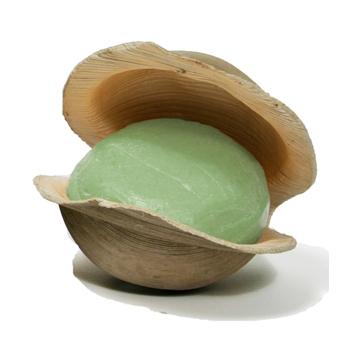 Vetiver-Soap-in-Shell.jpg