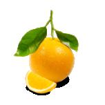 Magus apelsin eeterlik õli 10ml